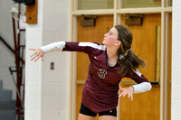 VOLLEYBALL GALAX VS CARROLL 8-18-16